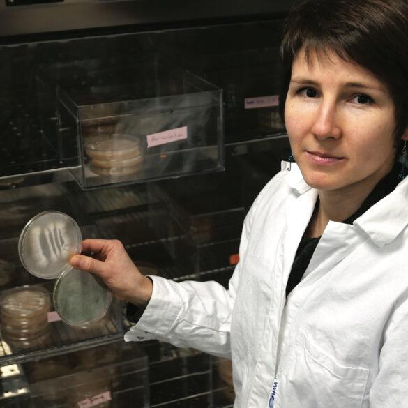 Jeanne Ropars, no seu laboratório de Saclay.